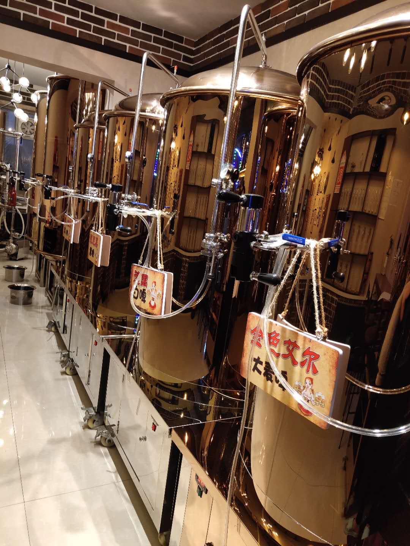自酿啤酒设备商家案例