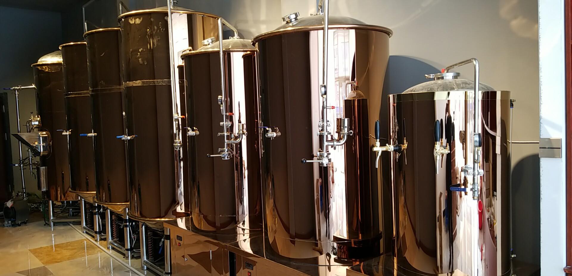 啤酒酿造之酵母的发酵过程