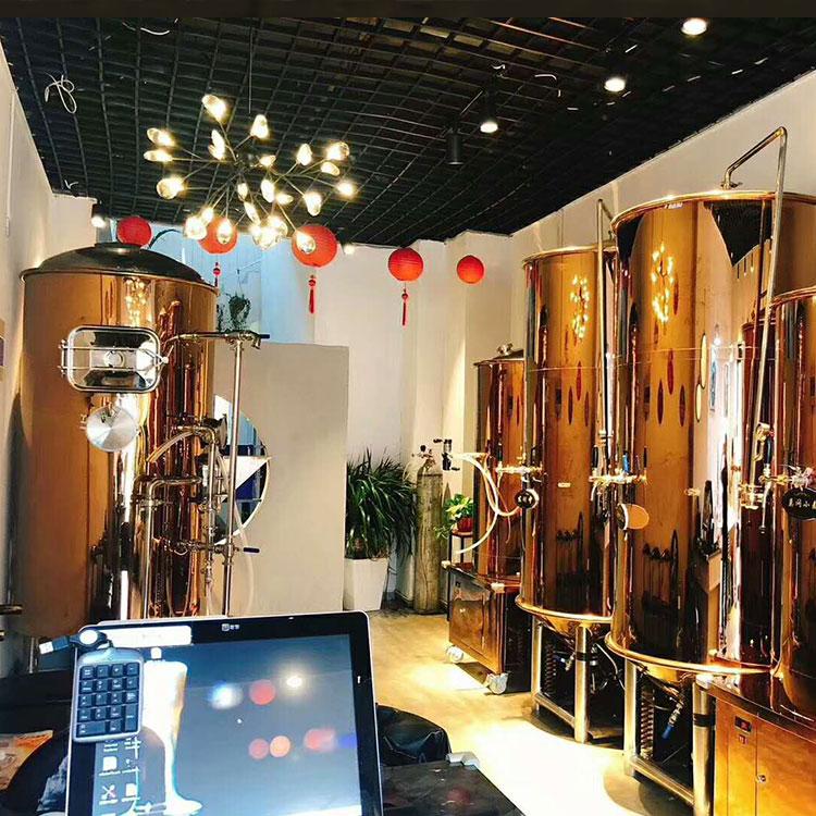 夜经济已经兴起,郑州麦德氏精酿啤酒加盟如何做?