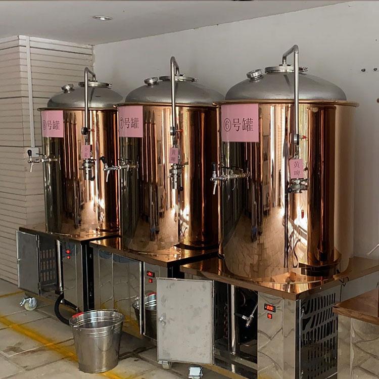 夜经济崛起看精酿啤酒设备未来发展